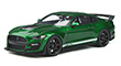 2020 Ford Shelby GT500, green